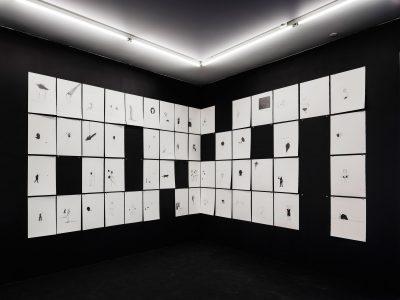 Ausstellung Instinct